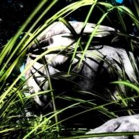 Смерть Галатеи