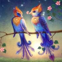 Liolio Birds