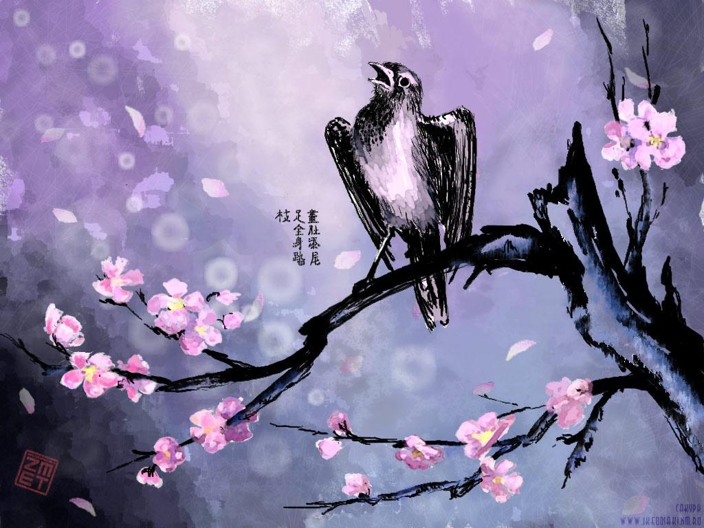 сакура картинки: