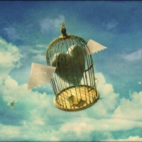«Лети...»