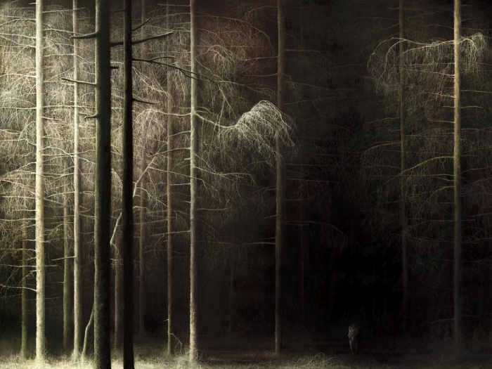 """Forest"", 2007"