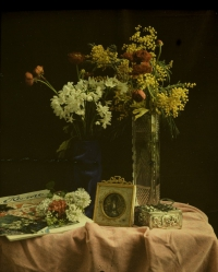 Charles Corbet, Still life with vase and flowers - c. 1910, autochrome 10 x 8,5