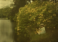 Charles Corbet, Girl at pond with yellow flowerbush - c. 1910, autochrome 9 x 12
