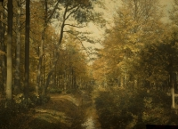Charles Corbet, Autumn in the woods - c. 1910, autochrome 9 x 12