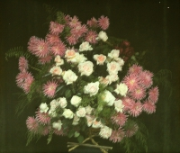 Georges Gilon, Bouquet with roses and chrysanths  c.1913, autochrome 9x12