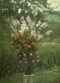 Georges Gilon, Bouquet with roses and gladioli  c. 1913, autochrome 12x9