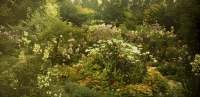 Alfonse Van Besten, Panoramic view of garden at Wommelgem    c. 1910, panoramic autochrome 9 x 18