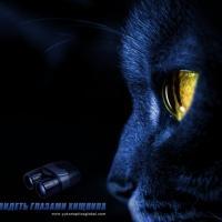 «Экстремальное видение хищника»